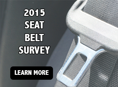 seat belt - click to learn more about seat belt survey
